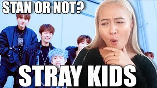 STRAY KIDS (스트레이 키즈) GRRR LAW OF TOTAL MADNESS (Grrr 총량의 법칙) + YOUNG WINGS(어린날개)  REACTION