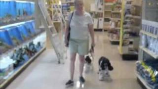 Christine With Two New Dogs Off Leash At Pet Smart -  J.j.loy: Www.friendtoanimals.com