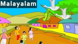 Foolish Tortoise   പഞ്ചതന്ത്രകഥകൾ   Cartoon /Animated Stories For Kids