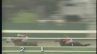 Thoroughbred vs. Quarterhorse - FG Dec. 1995