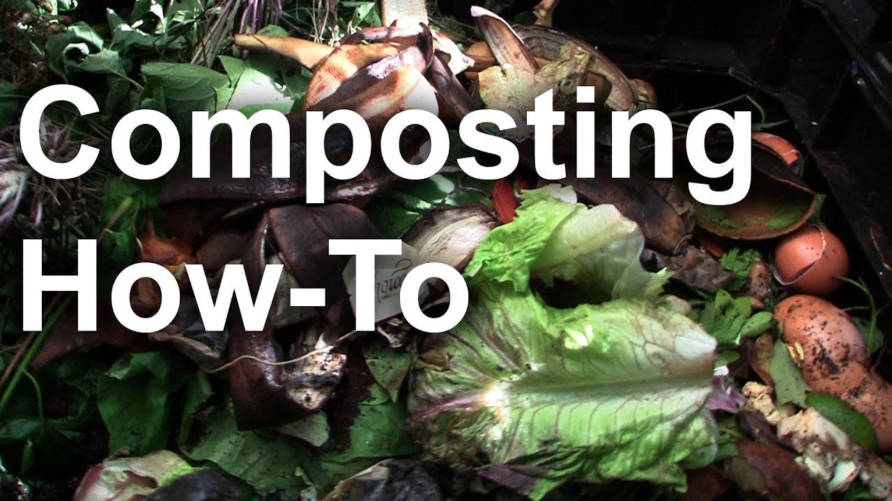 composting 101 basics backyard composting gardenfork tv youtube