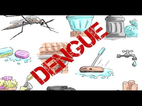 Delhi Municipal Council Issued Notice To Several Hospitals In Dengue Cases