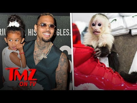 The Law Isn't Happy About Chris Brown's Monkey Business | TMZ TV Mp3