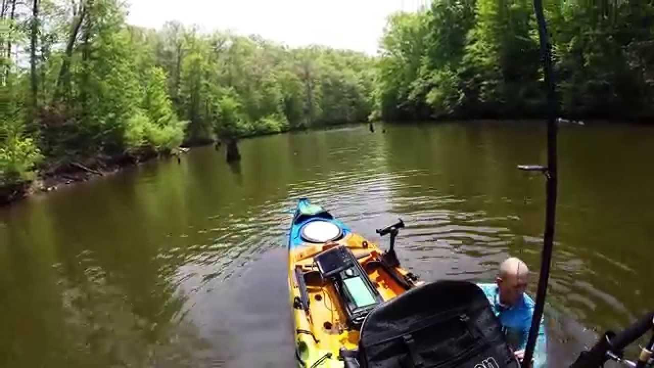 Kayak fishing woodrums lake wv youtube for Wv fishing regulations