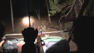 Mini 14 - Shooting Foxes, Pigs & Rabbits