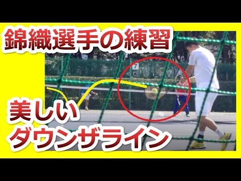 【楽天オープンテニス】超綺麗なダウンザライン動画:錦織選手の球出し練習が、各ショットのイメトレに最適『非常識なテニス上達理論』