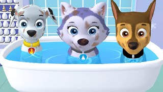 Paw Patrol A Day in Adventure Bay VS Adventure On A Roll - Pups Daily Life  - Fun Pet Kids Games