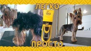 Машинка для стрижки собак и других животных .Dog Hair Trimmer