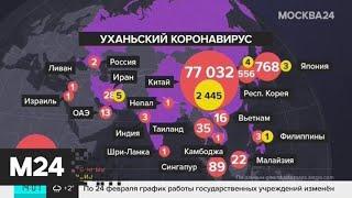 коронавирус может не проявлять себя около месяца – власти Китая - Москва 24