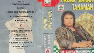 Pagar Makan Tanaman - MANSYUR S ( lagu dangdut jadul )