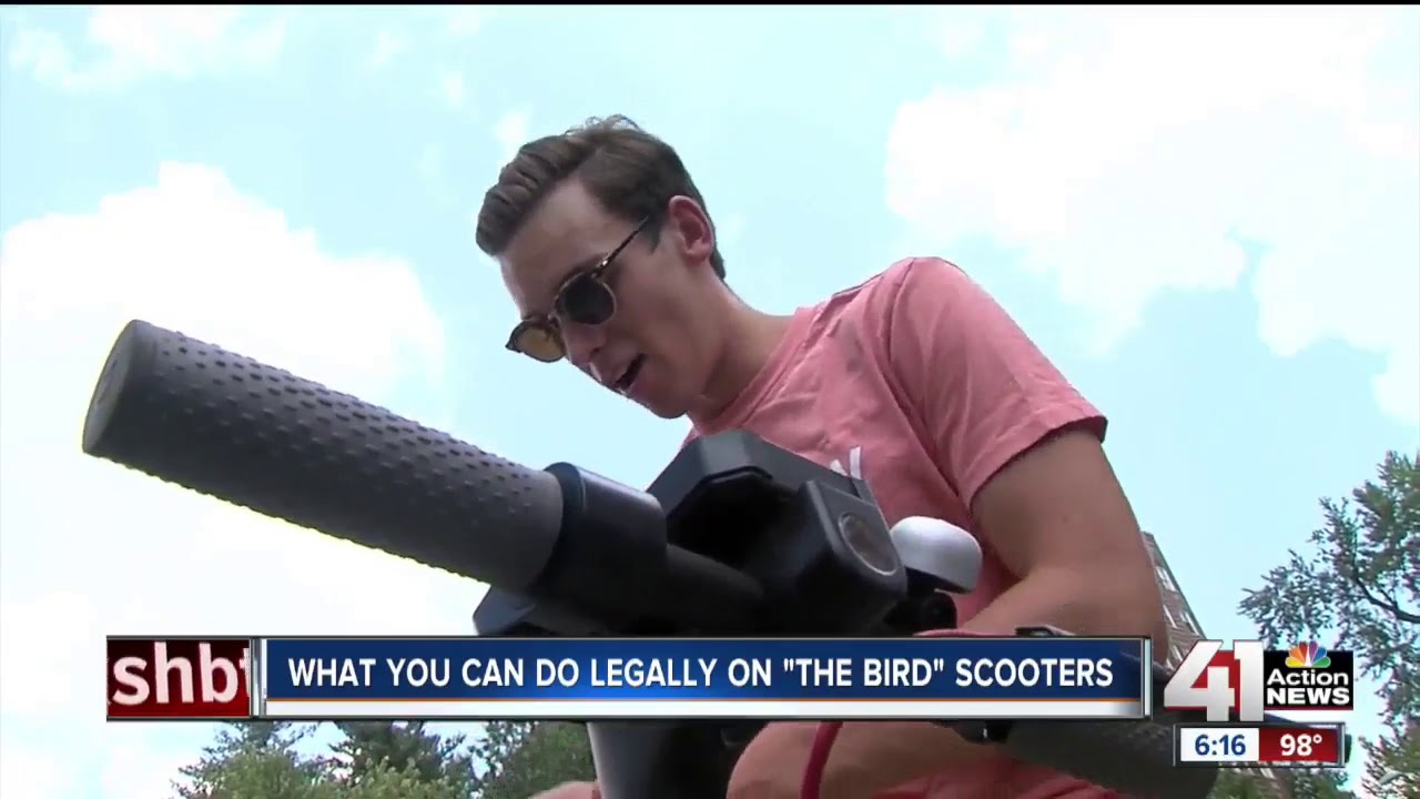 Know the rules before hopping on a Bird scooter