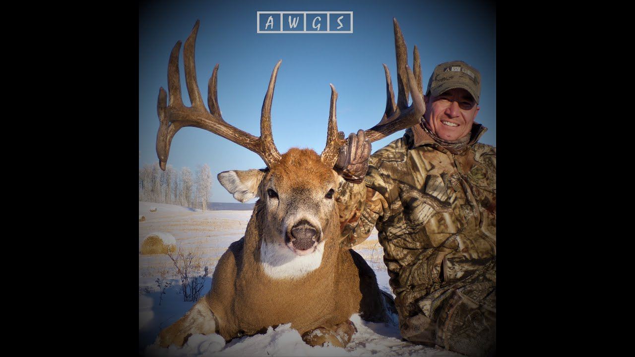 Trophy Whitetail Deer Hunting With AWGS In Alberta, Canada