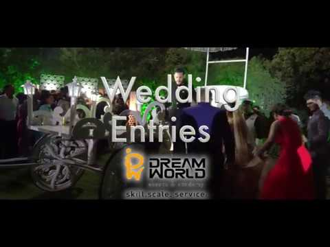 Dream World Wedding Entry