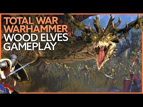 Total War: Warhammer Wood Elves DLC gameplay |