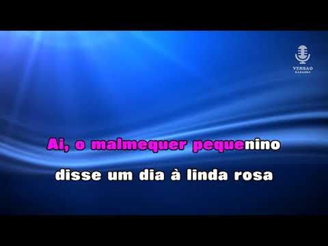 ♫ Demo - Karaoke - MALMEQUER PEQUENINO - Amália Rodrigues