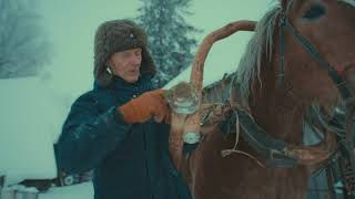 Grandfather. Part I. Winter - Horse Logging