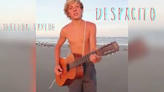 Depascito | shelton taylor | cover | must watch