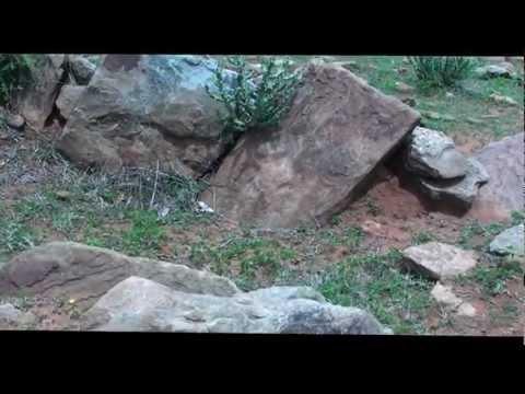 Prehistoric Megalithic tombs on Kutkankeri hill