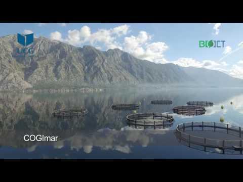 BIO-ICT promo video