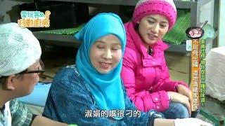 【桃園】雜糧界的台灣之光是原住民的古早味紅藜?【愛玩客之移動廚房】#222
