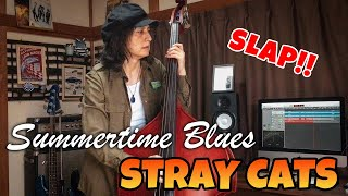 SUMMERTIME BLUES / STRAY CATS (LEE ROCKER)【DOUBLE BASS COVER】