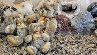 The History Of Vintage Steiff Zotty Teddy Bears