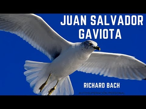 RICHARD BACH - JUAN SALVADOR GAVIOTA . from YouTube · Duration:  28 minutes 36 seconds