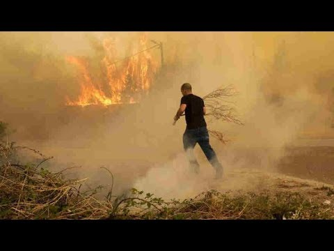 Download Youtube: At least 27 dead in wildfires as Portugal declares state of public emergency