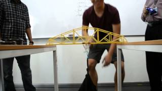 Fettuccine Bridge Testing