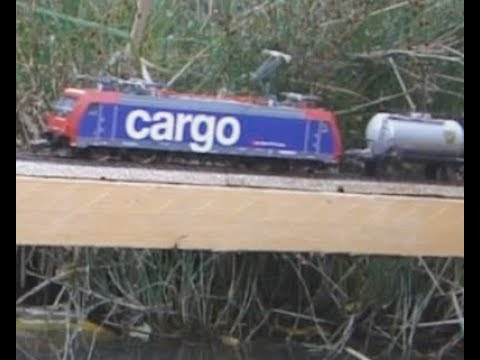 Les trains miniatures sont de sortie dans le jardin