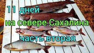 11 ДНЕЙ НА СЕВЕРЕ САХАЛИНА ЛЕНОК ХАРИУС ЧАСТЬ ВТОРАЯ Сахалинская рыбалка Sakhalin fishing