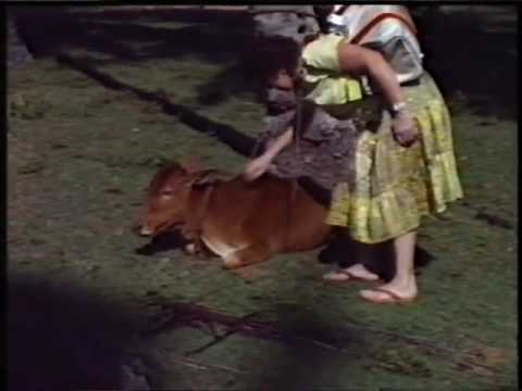 Ceylon 1987