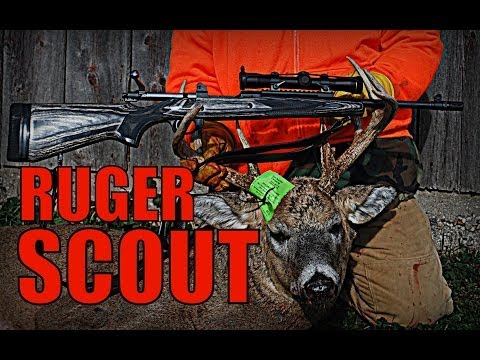 Ruger Gunsite Scout - First Kill