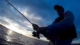 Ловля судака на спиннинг с лодки летом (июнь-июль) на воблер. ВИДЕО