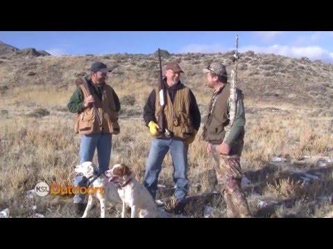 Chuker Hunting in Utah's West Desert