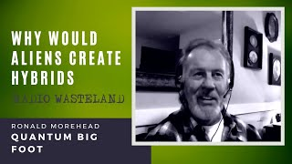 Why Would Aliens Create Hybrids | Ronald Morehead: Quantum Big Foot
