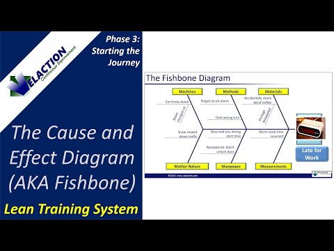 Cause And Effect Diagram Training Video Aka Fishbone Diagram