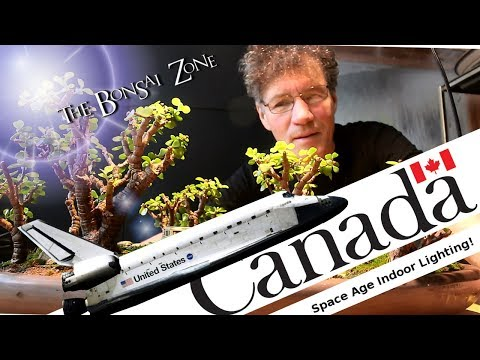 "Building a ""Canadarm"" for my Indoor Bonsai, Dec 2017"