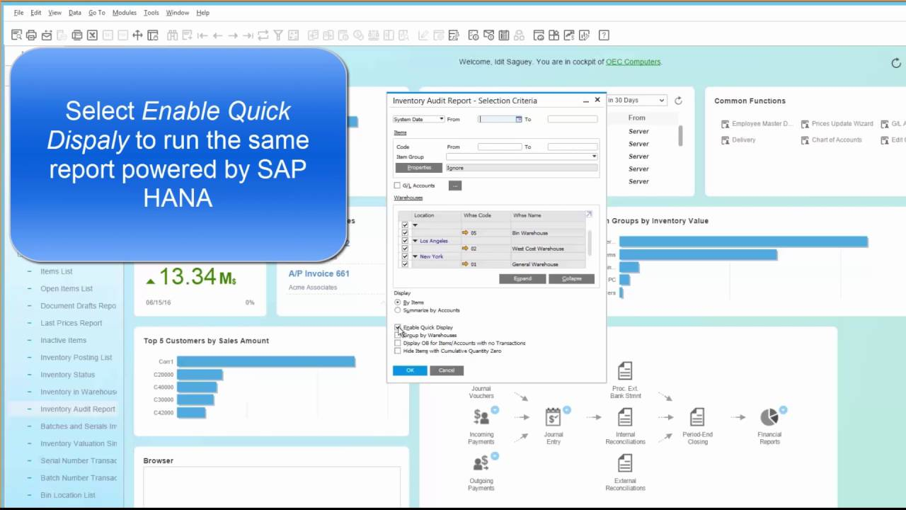Inventory Audit Report powered by SAP HANA