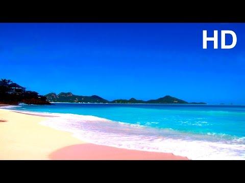Meeresrauschen mit Möwen - Entspannung Meditation