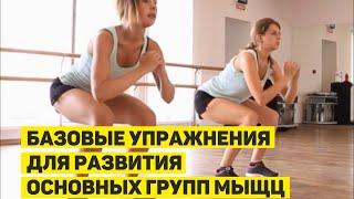 Базовые упражнения для развития основных групп мыщц