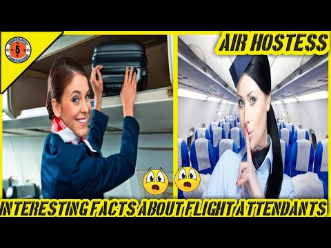5 Interesting Facts About Flight Attendants // Fantastic Five // Amazing Facts