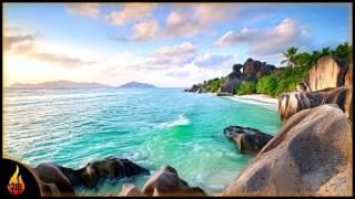 Island Reggae Music | Jamaican Beach | Relaxing Instrumental Reggae