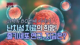 [과학톡 80회] 줄기세포 연구, 지금은?