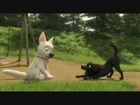 Volt une vie de chien youtube - Volt chien race ...