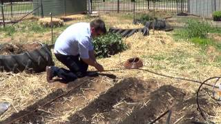 How To Install The Netafim School Vegetable Garden Drip Kit