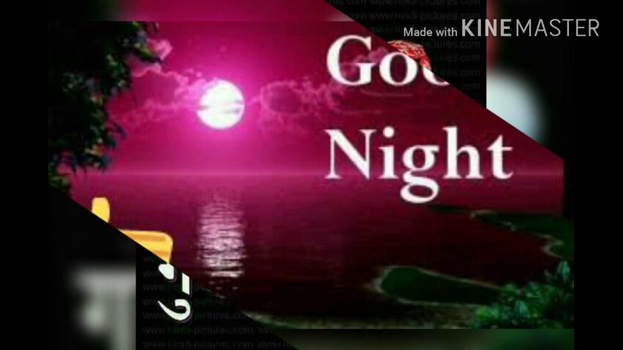 Good Night Friends Status Vedio Youtube