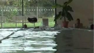 Plavecká soutěž měst 2011 v rychnovském bazénu