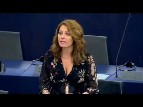 Sexual Harassment & Abuse in the EU 25.10.2017 UKIP, KORWIN-MIKKE