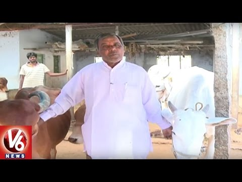 Success Story Of Organic Farmer Satti Reddy | Chityal | Sagubadi | V6 News
